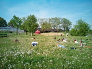 creative community garden