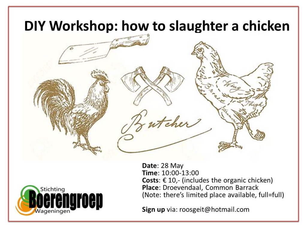 poster chicken workshop