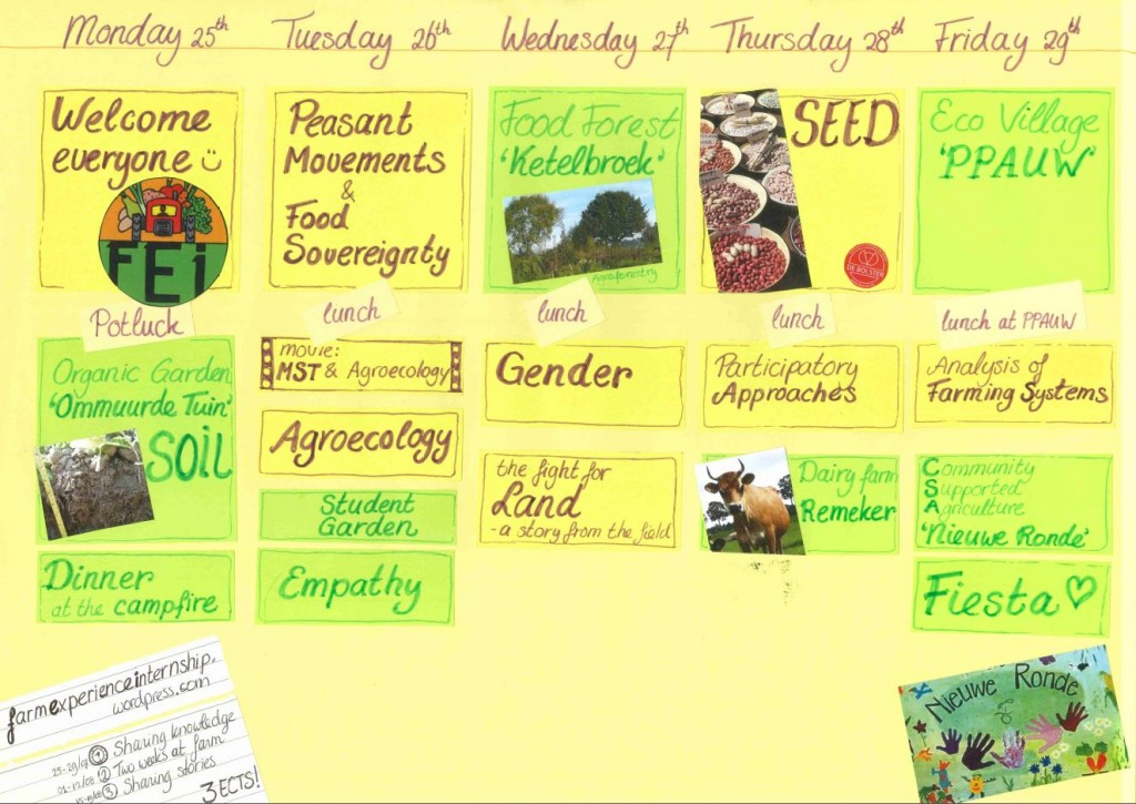 FEI schedule