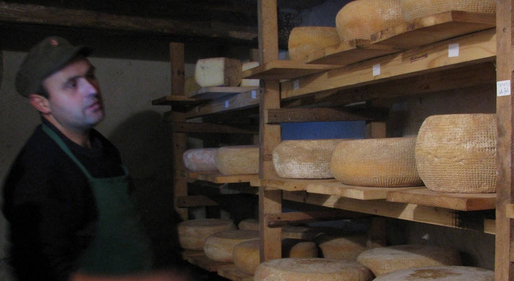 cheese-alunis