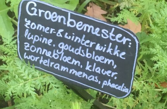 Excursion to the Ommuurde Tuin: report