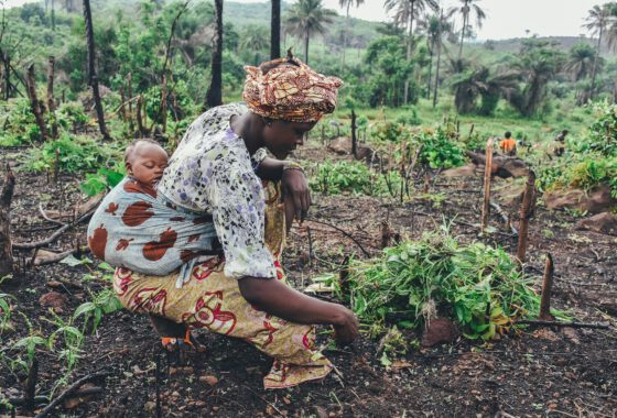 Women's Rights in Agriculture