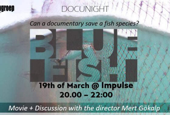 DOCU – Bluefish + Discussion with director