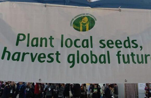 Seed saving webinar : what's next ?