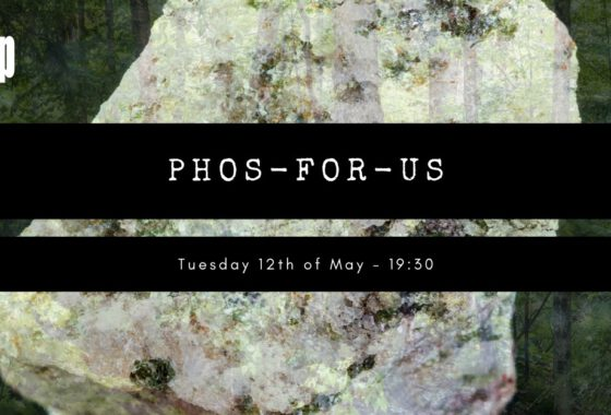 Niek Pepels: the phosphorous crisis: an alternative look from the forest