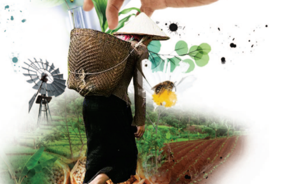 Junk Agroecology – new report by TNI and Friends of the Earth