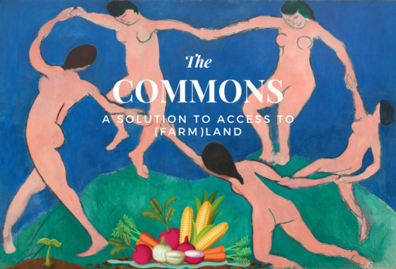 Recording Commons: a solution to access to (farm)land?